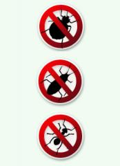 Fight with pincers