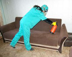 Fight with bed bugs