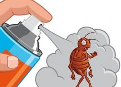 Sanitary processing from insects