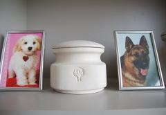 Cremation of pets