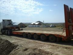 Trawl 9942L5