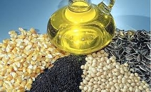 PURCHASE OF OIL-BEARING CROPS