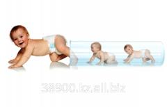 Donazione di ovocellule (oociti)