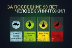 Разработка и реализация ПРИРОДОПОДОБНЫХ/ЭКО систем