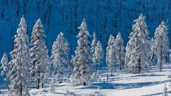 Зимний отдыx, база Зиновъевка