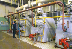 Diagnostics of the gas equipment of thermal power