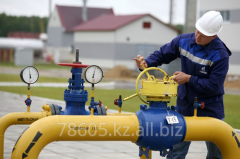 Inspection of the gas equipment of systems of gas