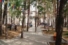 Детский отдых в Боровом