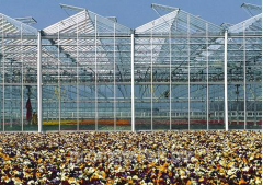 Construction of greenhouses