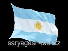 The visa to Argentina