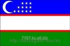 The visa to Uzbekistan