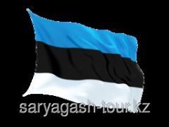 The visa to Estonia