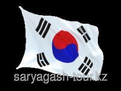 The visa to South Korea