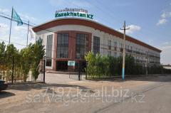 Organization of conference Saryagash sanatorium