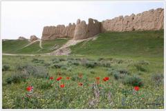 Экскурсия Раскопки древних городищ