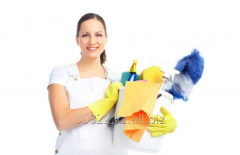 Service of professional cleaning of rooms and