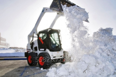 Service of cleaning and export of snow