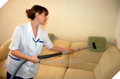 Service of a dry-cleaner of furniture at home