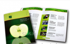 Production of Brochures