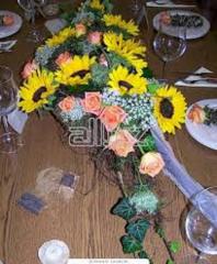 Services in floristics in Kazakhstan