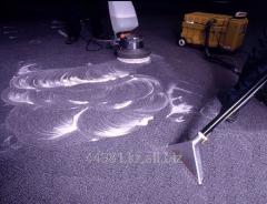 Carpet dry-cleaner