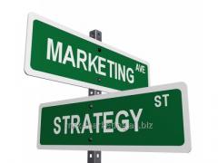 Development of the marketing plan