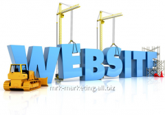 Services in creation of the website