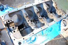 Repair of motor transport and Alibekmol's