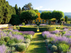 Сад во французском стиле