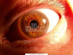 Офтальмологическое обследование и современная