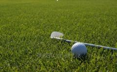 Строительство полей для гольфа