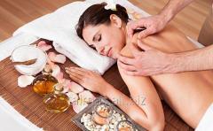 Massage of a back of 30 min.