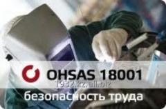 Security systems and labor protection of OHSAS