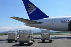 International transportation of luggage