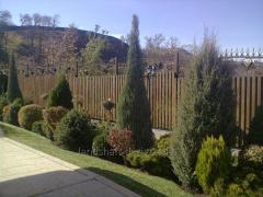 The development of landscape design