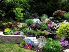 Beautification of rock gardens