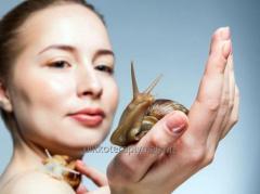 Устранение рубцов и шрамов с помощью улиткотерапии