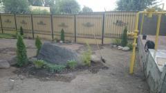 Creating of rocky gardens