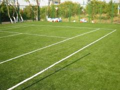Maintenance, processing, servicing of sports lawns