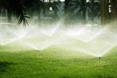 Полив зеленых насаждений в Астане