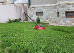 Озеленение частных участков