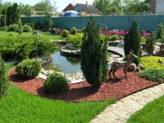 Improvement, gardening, landscaping!