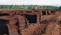 Extraction of peat