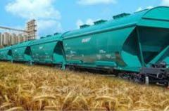Set of services on expediting of grains and