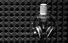 Дикторские Услуги - Озвучивание Аудиокниг , Аудио-Реклама
