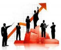 Услуга Бизнес-информация