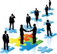 Сбор информации и аналитика для создания бизнес-плана