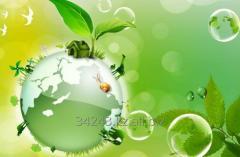 Внедрение экологического менеджмента в