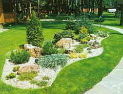 Landscape garden design with a glance of geopathic