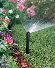 Watering of flowerbeds and mixborders